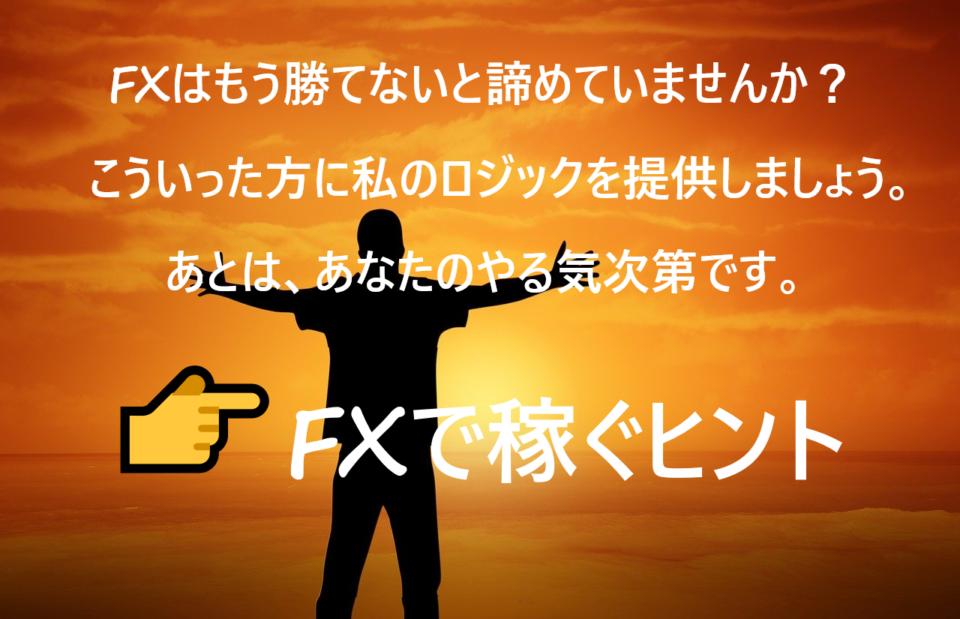 ネガティブインジケーター、FX